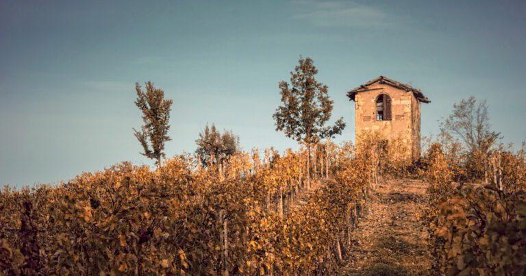Monferrato - Festival del Paesaggio Agrario
